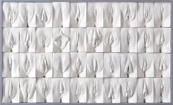 работы художника Джейми Маккартни «Великая стена вагин»